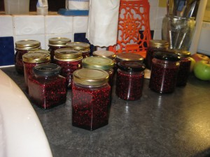 Jam making with David Baldwin and Julia Sinclair in Winchester
