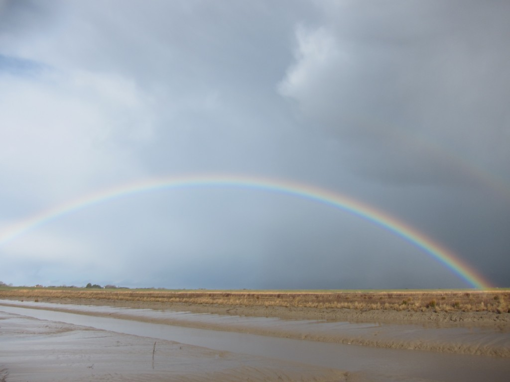 Typical British weather while on site: rain, sun, rain, hailstorms and many double rainbows