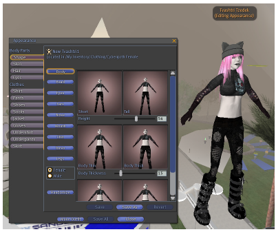 Figure 6: Avatar customization in Second Life [4]