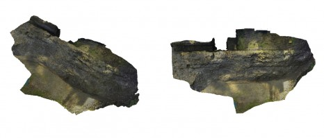 Photogrammetry model of the NS mole