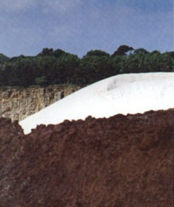 Fig. 1 - Silica sand: Foreground - The raw material, Background - High purity product.